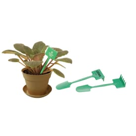 Plant Spade And Rake Combination Tool