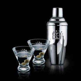 Martini Shaker & Glass Kit