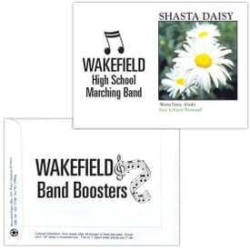 Impression Series Seed Packet- Shasta Daisy
