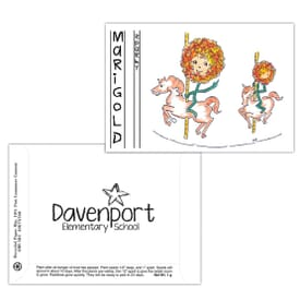Dorothy's Kids Series Seed Packet- Marigold