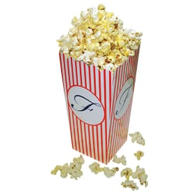 Popcorn Box Large Scoop